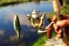 Малообеспеченные семьи Кыргызстана «научат ловить рыбу»