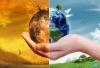 Смогут ли три миллиона решить проблему с изменением климата?