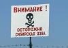 Кыргызстан под угрозой сибирской язвы?
