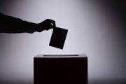 Юрист предложила наделить граждан правом агитировать против референдума