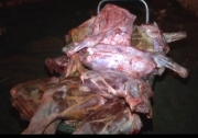 Прокуратура возбудила дело по факту продажи «мертвечины» на Ошском рынке