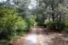 Ботанический сад станет «национальным»