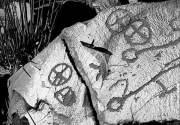 Злободневные заметки древнего человека #глазамифедорова