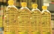 Кыргызстан начнет производить собственное растительное масло