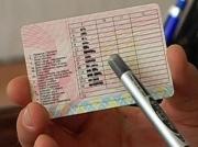 Срок действия кыргызстанских водительских прав в России могут продлить