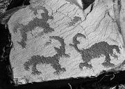 Горные козлы руками древних