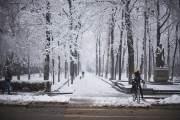 Грядет снег