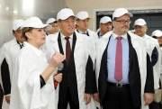 Правительство создает условия для беспрепятственного экспорта в страны ЕАЭС