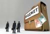 Счетная палата выявляет крупные нарушения, а в бюджет поступает мало