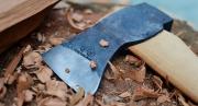 Действие закона о запрете рубки особо ценных древесных пород продлили до 2030 года