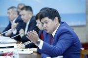 Возмущение кыргызстанских депутатов передадут руководству Германии