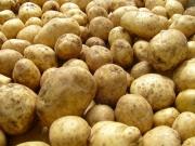 Узбекистан скупил почти весь картофель в Ошской области?