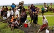 Выступления мусульманских организаций КР по Мьянме – часть общемировой кампании