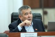 Инициаторы отмены депутатских привилегий продолжат добиваться своего