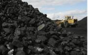 Правительство отчаянно пытается не допустить повышения цен на ГСМ и уголь
