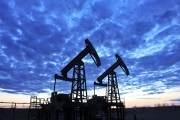 Председателем правления «Кыргызнефтегаза» избран Рашит Бостонов