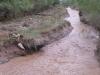МЧС предупреждает об угрозе схода селевых потоков