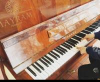 В сквере «Театральный» поставили пианино (фото)
