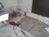 Житель села Пригородное подал заявление в отношении неизвестных, которые застрелили его собаку