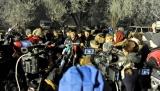 Специалисты из Москвы и Турции прилетают завтра для проведения расследования