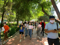 Митингующих в Бишкеке за свободу слова поддержали водители (видео)
